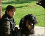 NZB 18.09.2010 Antek