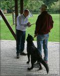 NZB 18.09.2010 Alea